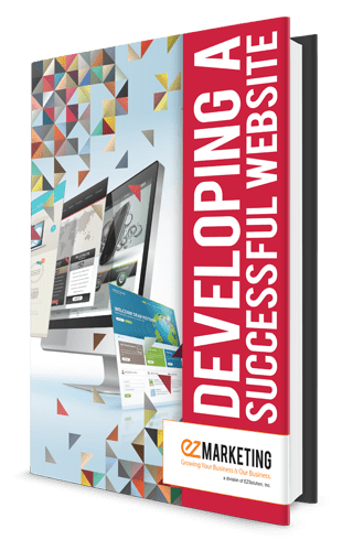 Developing a Successful Website book