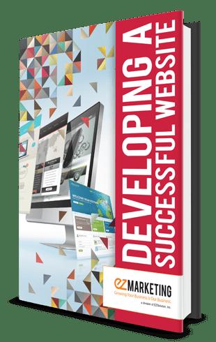 Developing a Successful Website book