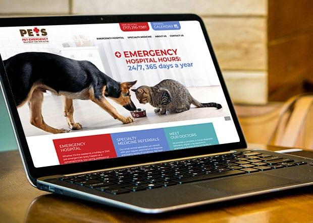 Lancaster PETS website