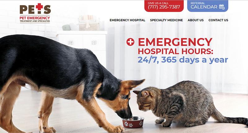 Lancaster-PETS-homepage