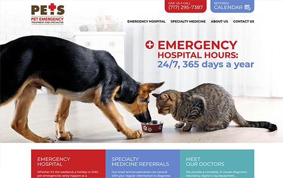 Lancaster PETS website screenshot